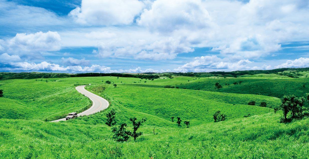 Milk Road