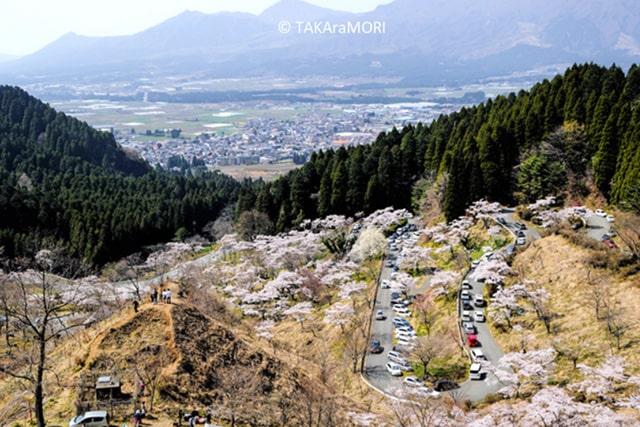 takamori04-min